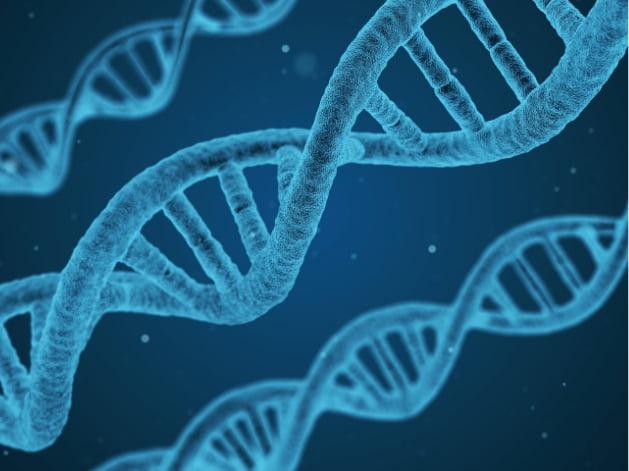 Hiểu Về Hệ Gen Dược Lý - Nghiên Cứu Về Vai Trò Của Gen Trong Đáp Ứng Thuốc