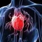 Bệnh Tim Mạch Là Gì? 9 Dấu Hiệu Cảnh Báo Cần Lưu Ý
