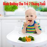 Dinh Dưỡng Cho Trẻ 7 Tháng Tuổi - 6 Lưu Ý Mẹ Cần Nằm Lòng